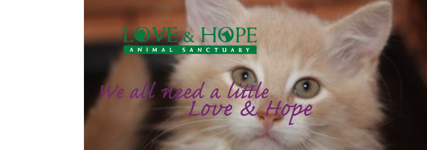 Love and Hope Animal Sanctuary, Inc. - We all need a little Love and Hope